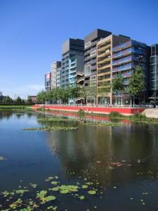 Futuristis-lumpeenkukkainen maisema Lelystadista